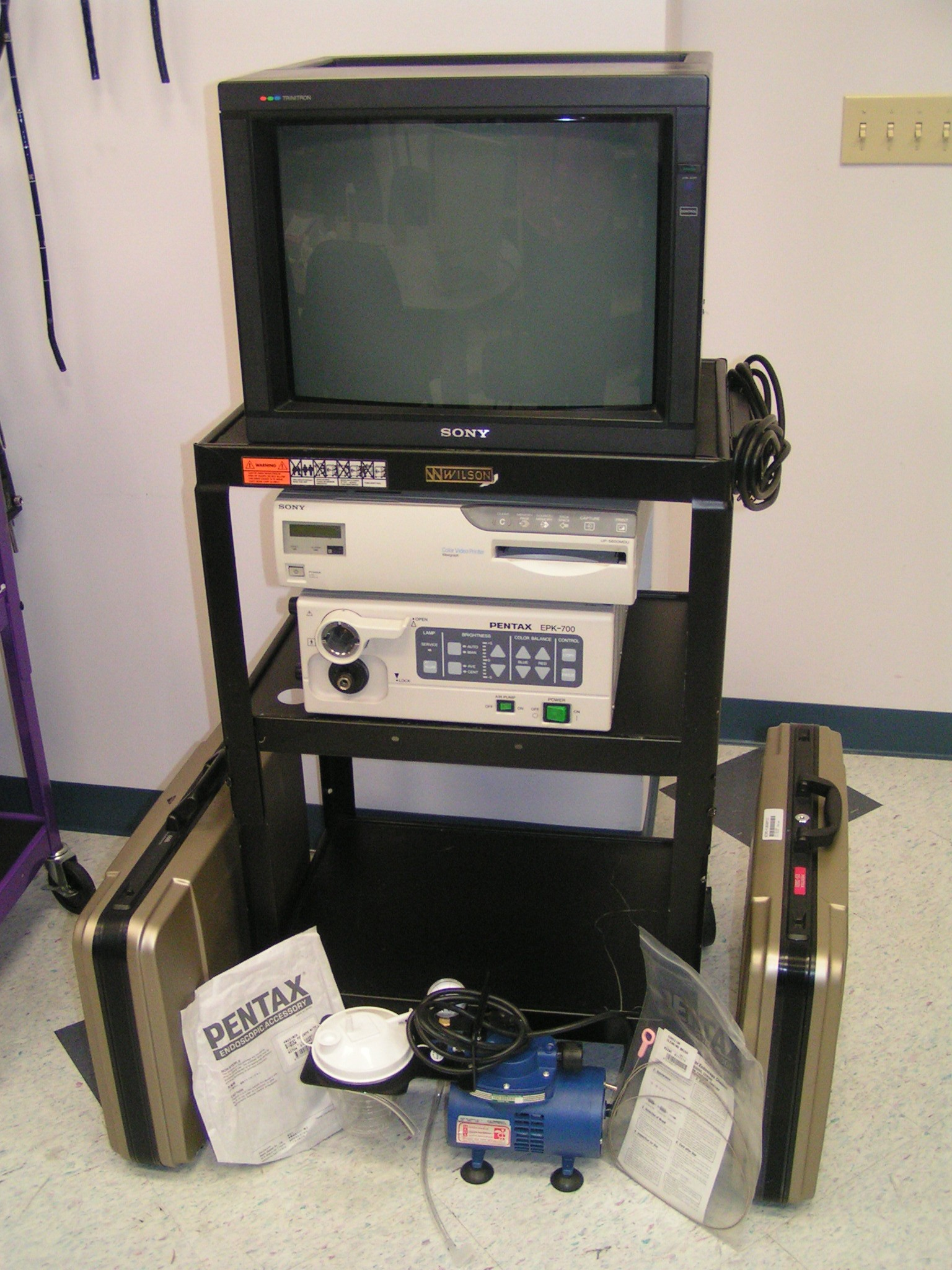 Printable Endoscopy: Olympus CV-100 Endoscopy System